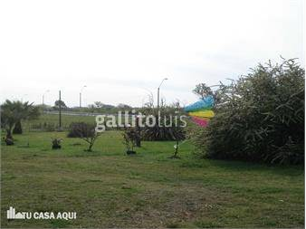 http://www.gallito.com.uy/predio-logistico-sobre-ruta-8-km-33300-casi-bypass-de-pando-inmuebles-12273990