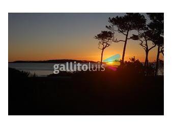 http://www.gallito.com.uy/frente-al-mar-2-dorm-2-b-cochera-aa-wifi-ascensor-porteria-inmuebles-8894965
