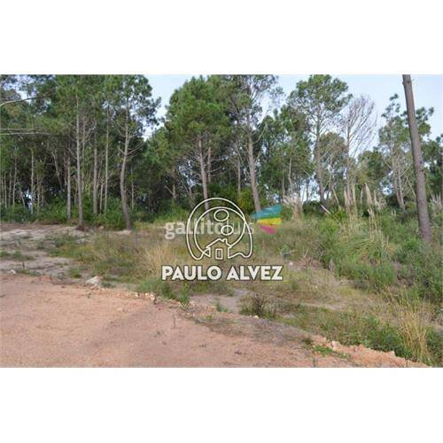 Terrenos-venta-punta-colorada-te896